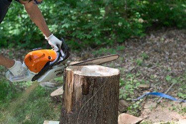 At an angle, cut the top of the log.