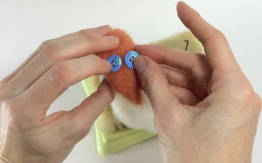 Female hands holding blue buttons against an orange fox