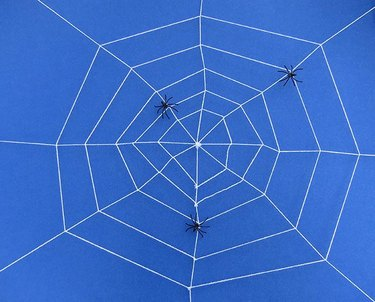 A large rope web on a blue background