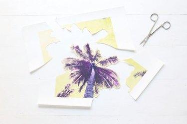 Cut around the palm tree