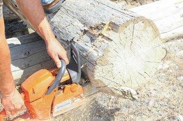 How to Make a Log Planter