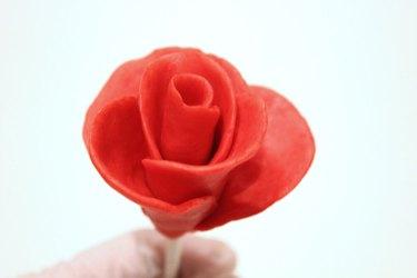 full rose