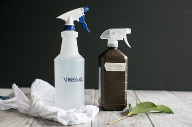 Homemade Natural Disinfectant Cleaner That's Better Than Bleach