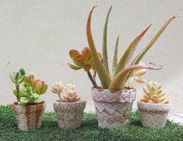 1 lace-adorned plant pots