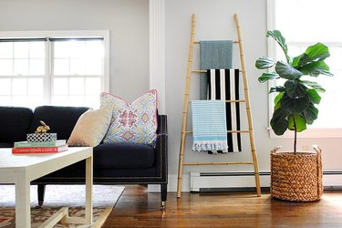 Living room with bamboo ladder leaning against wall next to plant and couch