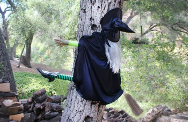 witch on a broom running into a tree