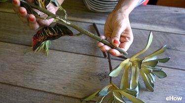Stem of artificial croton plant.