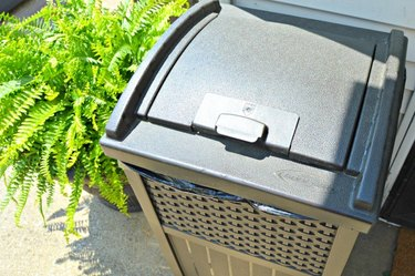 Keep a lidded waste bin outside to keep bugs from going into your home.