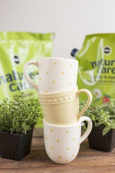 Supplies needed for a mug herb garden.