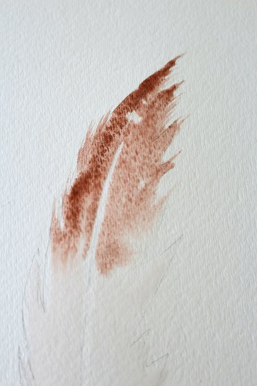 Continue to paint feather.