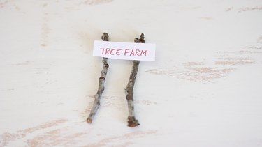 "Gluing ""Tree Farm"" sign to twigs"