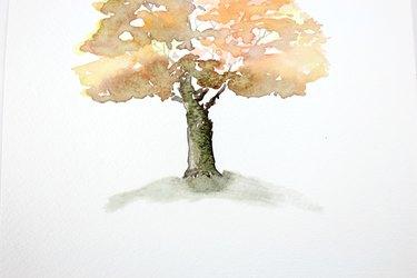 Shade under tree