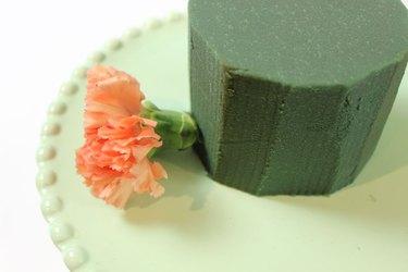insert carnation