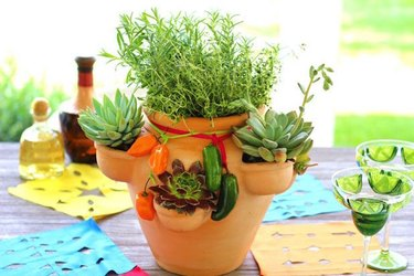 herb and succulent garden in strawberry pot