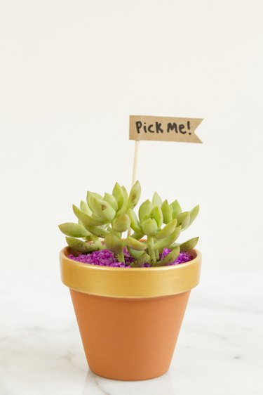 Planter with a gift tag