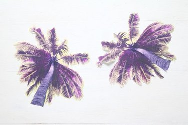 Cut out the second palm tree