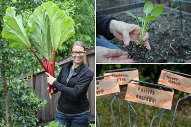 Tips to Get a Vegetable Garden Growing