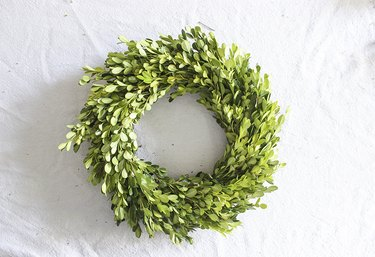 Finished boxwood wreath ready to be hung.