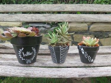Chalkboard patterned pots in a row