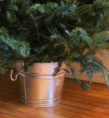 Tree in galvanized bucket.
