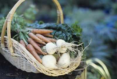 Basket of turnips and carrots, close up
