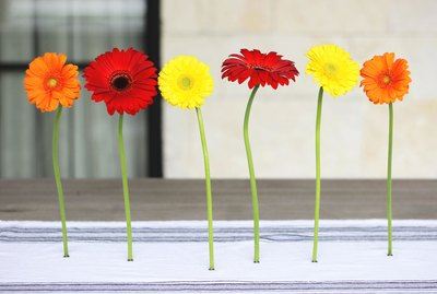 magnetic flowers