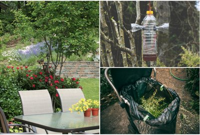 10 Smart Ways to Bug-Proof Your Backyard