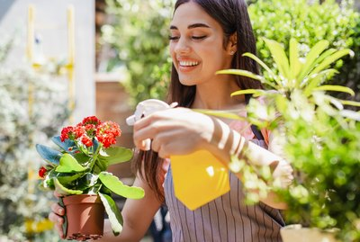 Young woman is taking care of planta in her hand in her backyard