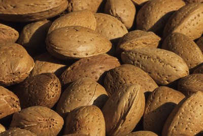 Almonds drying in sunshine, Cyprus, close-up