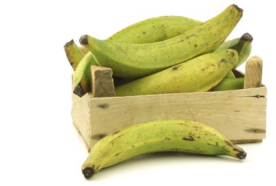 unripe baking bananas (plantain bananas) in a wooden crate