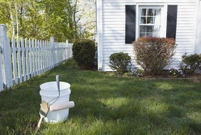 Paint bucket in yard
