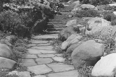 Footpath in rock garden, (B&W)
