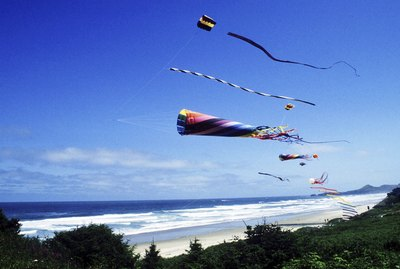 Kites flying on a beach