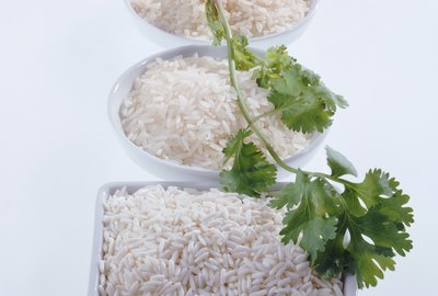 Rice plate and coriander on white background, close-up