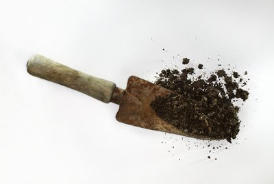 Spade with dirt