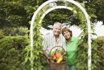 Couple with basket of fresh produce