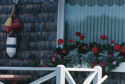 Window display and stripy awning over window , Philadelphia , North America