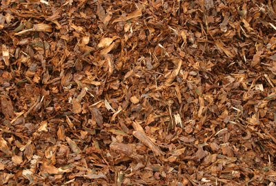 Wood chips for landscaping