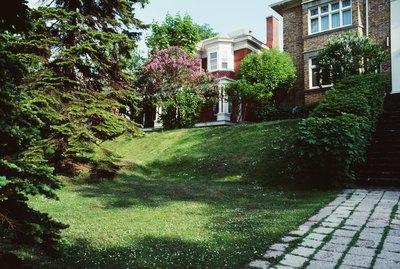 Backyards of houses