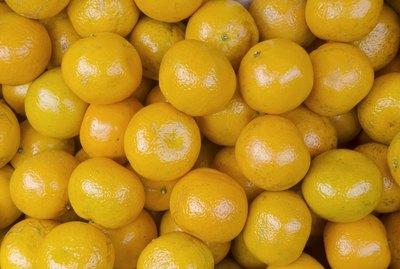 Ponkan Oranges