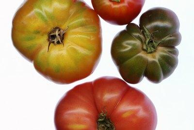 Heirloom tomatoes (Solanum lycopersicum)