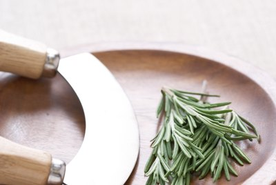 Rosemary in herb chopping board