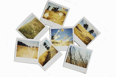 Polaroid images of landscapes