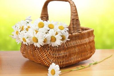 beautiful bouquet of chamomile in wicker basket on wooden table
