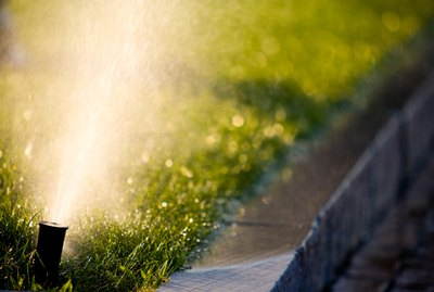 Close-up of sprinkler spraying lawn by curb