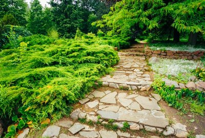 Stone pathway walkway lane path with green trees and bushes in garden. Beautiful alley in park.