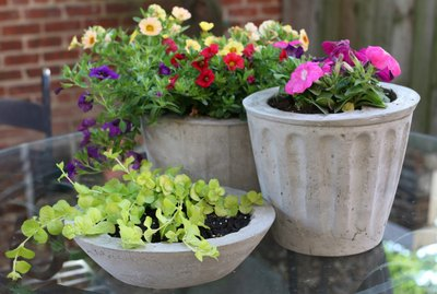 Cement Plant Pots Tutorial