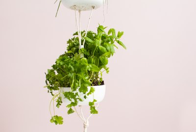 Easy Hanging Herb Garden