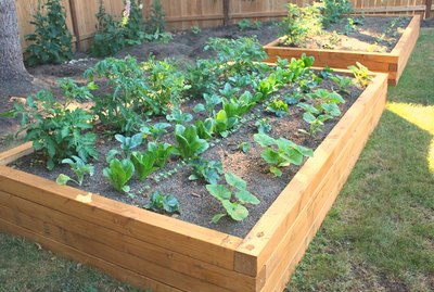 Completed raised garden bed project