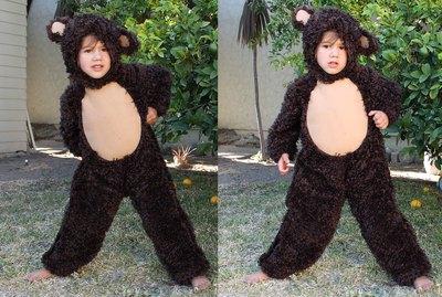 Will you be a fierce bear or a teddy bear?